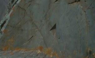 следы древней дисковой пилы