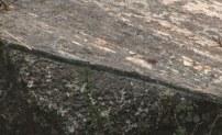 след еще одного пропила древней фрезой в Суцеа Аман