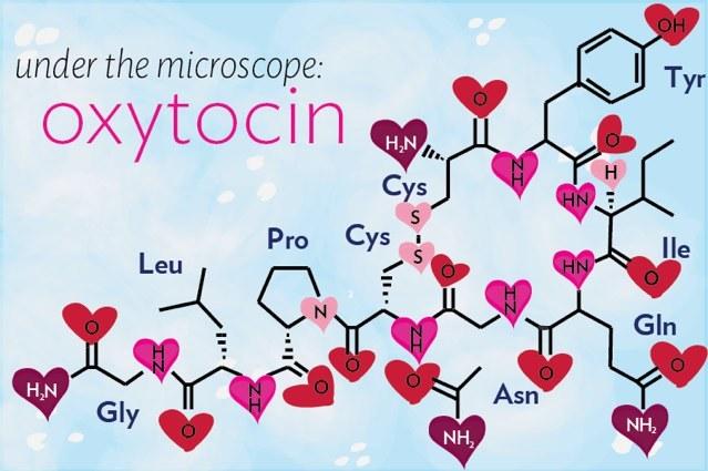 гормоны счастья и любовь