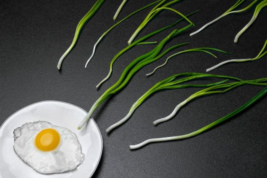 состав мужской спермы