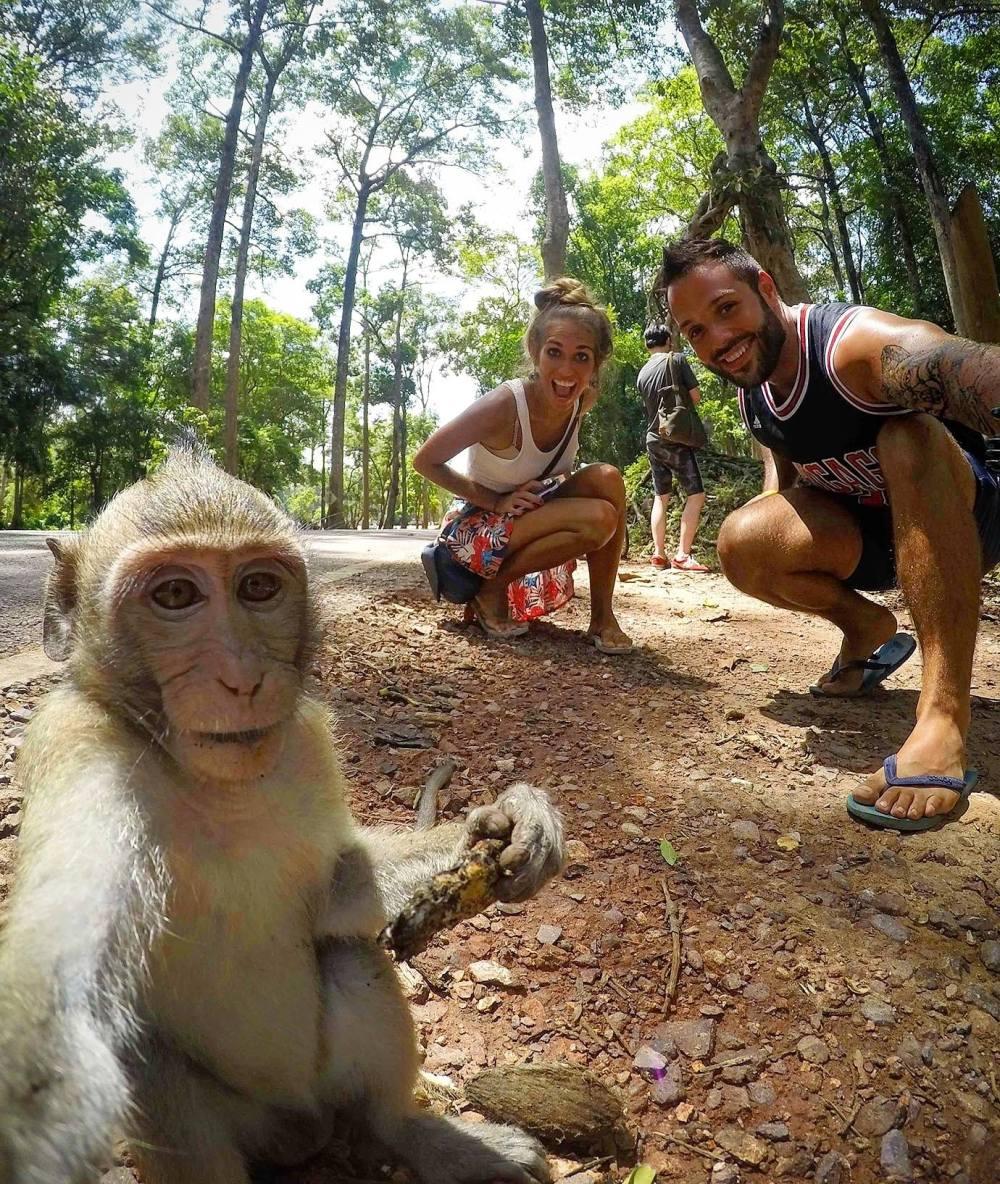 Aprender al viajar con los monos de Siem Reap
