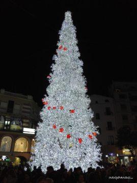 Albero di Natale in piazza a Salerno