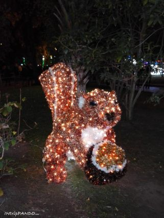 Luminarie di Salerno, scoiattolo