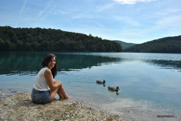 Anatre nel lago di Plitvice