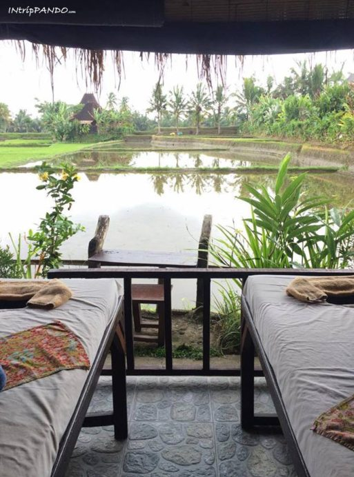 Una spa tra le risaie ad Ubud