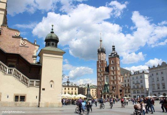 piazza mercato cracovia