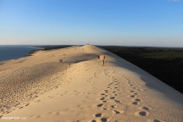 duna pilat panorama