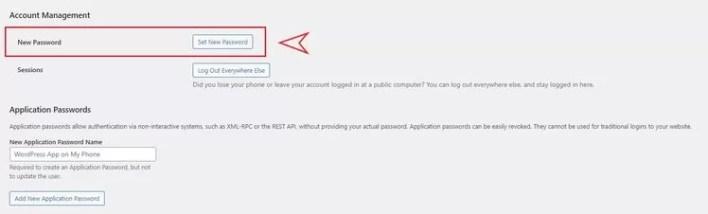 WordPress New Password Set