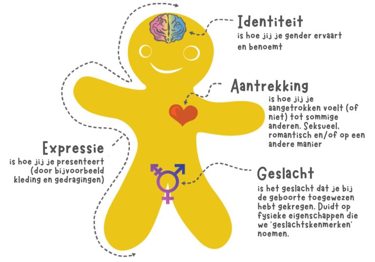 genderkoek genderkoekpersoon NL Nederlands Genderiddentiteit genderexpressie aantrekking en geslacht. wat is het verschil tussen deze dingen.
