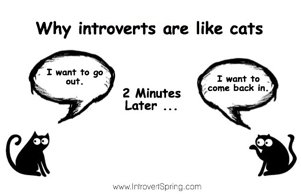 Image result for introvert meme