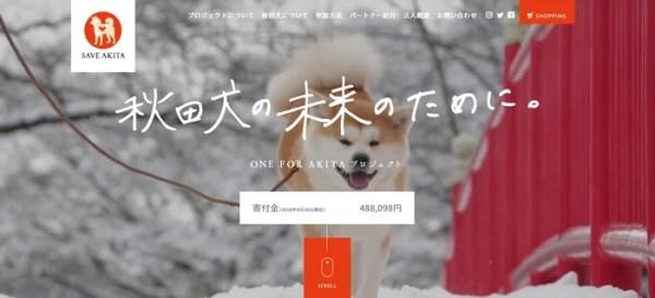 秋田犬の故郷、秋田県で秋田犬が殺処分されるのはなんと全体の1割以上