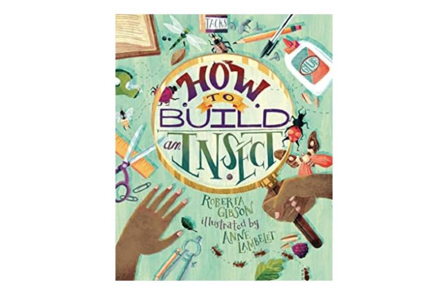 Cum să construim o insectă