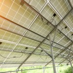 Tinted Solar Panel Farms Can Grow Food While Generating Electricity