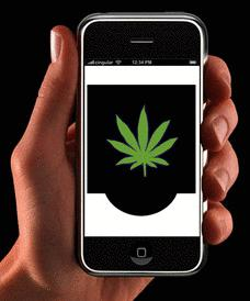 Image result for Cannabis App