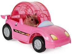 Hamster Wheel Race Car