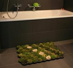Living Moss Bath Mat
