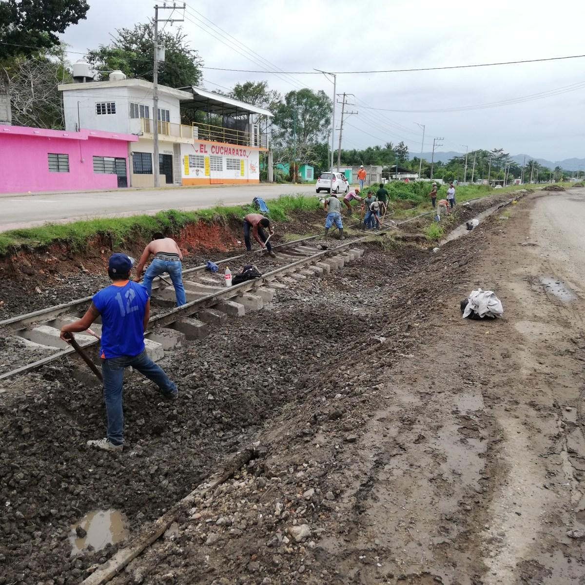 Fonatur explica el proceso de estudios ambientales del Tren Maya