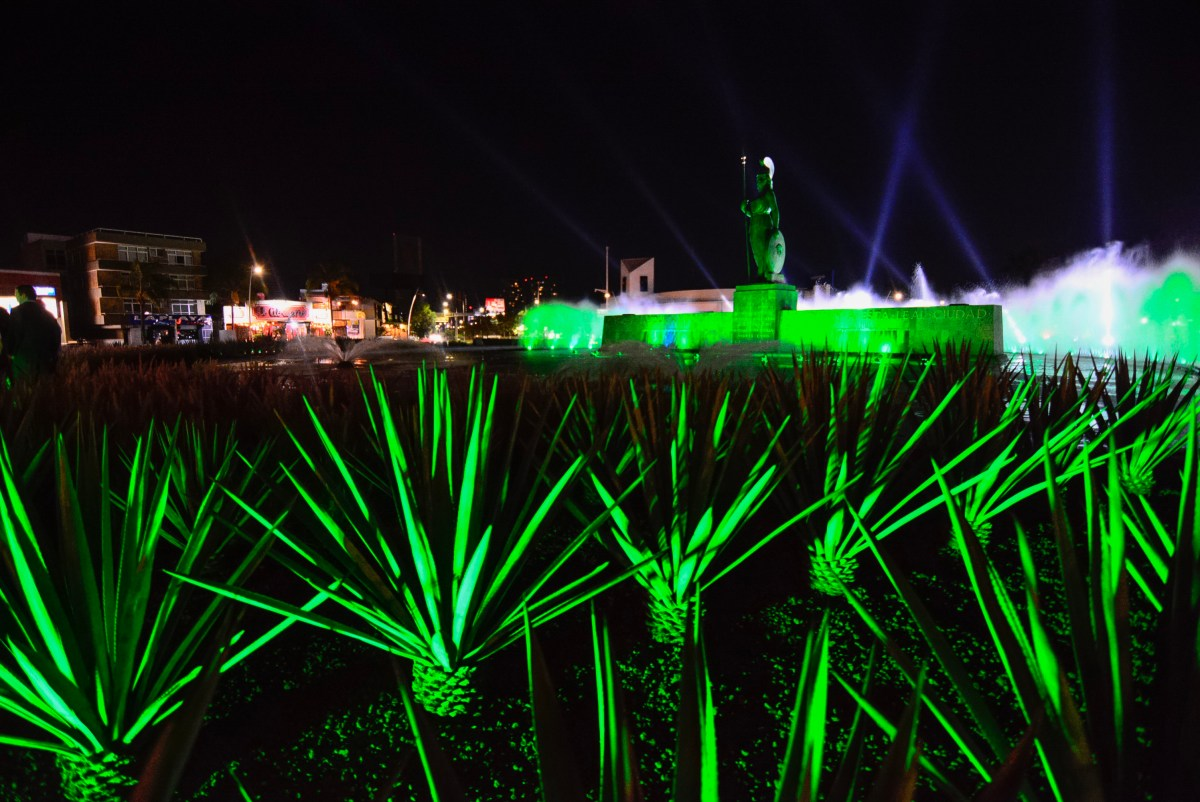 "Tourism Ireland prepara la décima edición de ""Global Greening"""