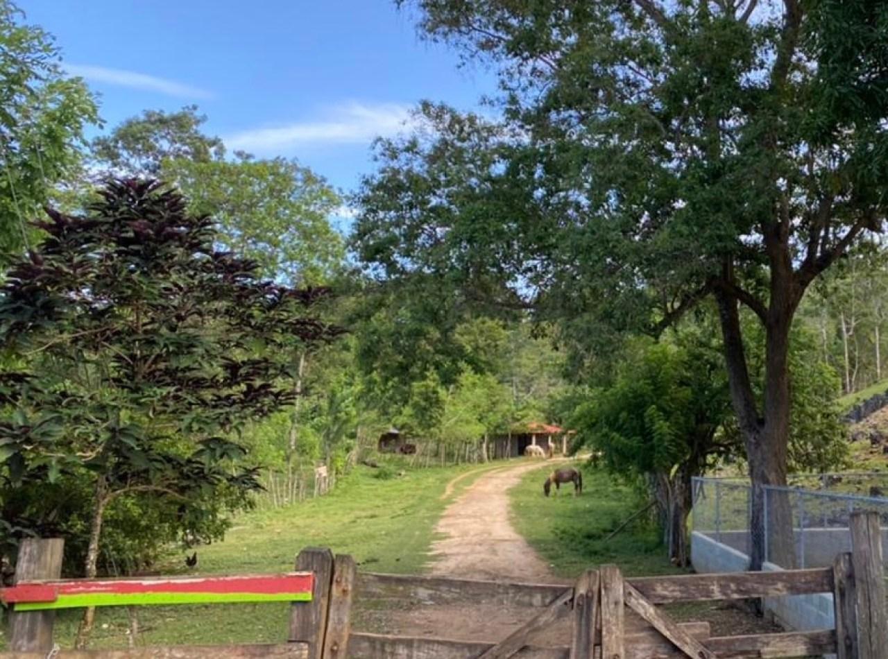 Kilometros de Terreno Disponibles Ubicación Privilegiada, Samaná