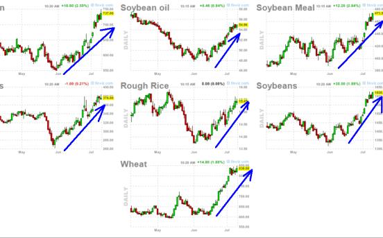 commodities-11-julio-2012-510x276% - La Industria del grano en EEUU hizo suelo en Mayo