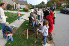 community-tree-planting-event1