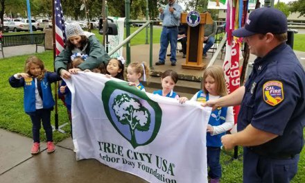 Arbor Day celebrations to bring 100 new trees to Lodi