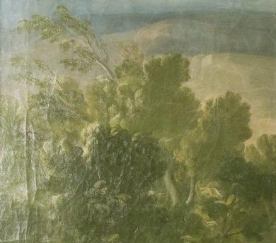 """Fig. 5a-Detalle de los árboles en """"La Osa Hormiguera""""."""