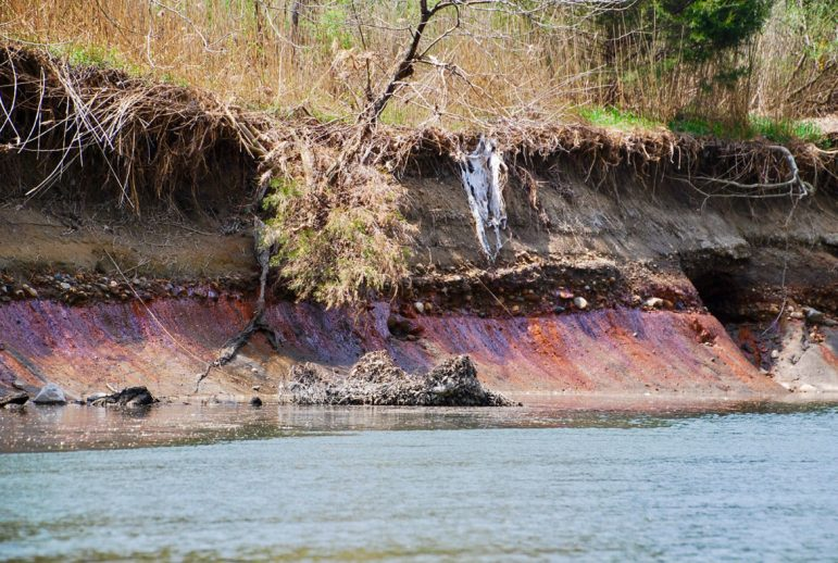Coal ash seeps on the bank of the Middle Fork River