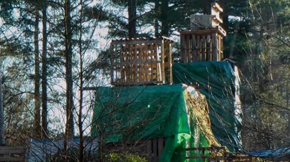 bury-hill-wood-gathering-170204-fil-jackson-4