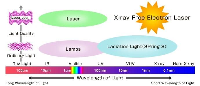 圖 六 Synchrotron 和 XFEL 在光譜與調性上的示意圖。XFEL 光源具有高同調性 (coherence)、高單色性 (monochromatity) 與高亮度 (brightness) 等特性。 資料來源: http://xfel.riken.jp/eng/xfel/