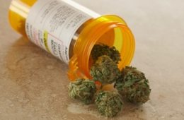 Cure Your Headaches With Medical Cannabis!