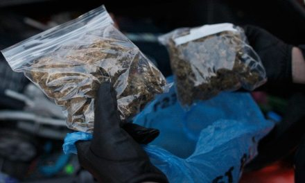Denver PD runs out of storage for confiscated pot, begs for more shelves
