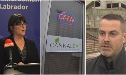 Hold the joint: St. John's weed shop 'in breach' of city, legal rules