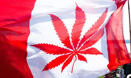 Canada May Be Readying to Fully Legalize Marijuana