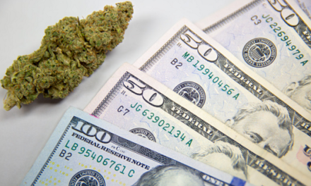 What Does the Falling Cannabis Price Mean?