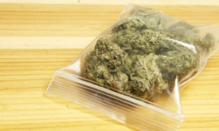 Weed Home Delivery Hits Another State