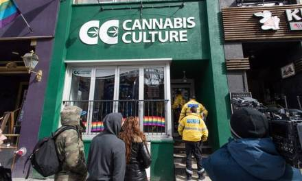 Why are people being arrested for pot if the Trudeau government is looking to legalize it? – Globalnews.ca