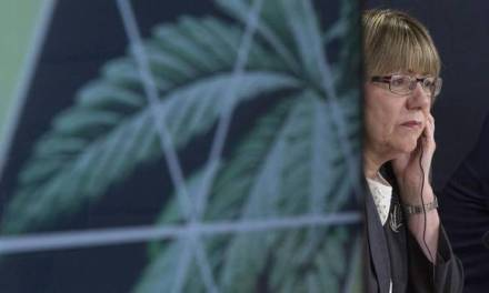 Questions raised over marijuana task force chair's ties to industry