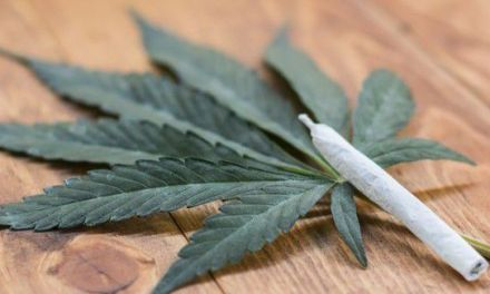Which Marijuana Stock Will Be Next to Reach a $1 Billion Valuation? – Bloomington Pantagraph