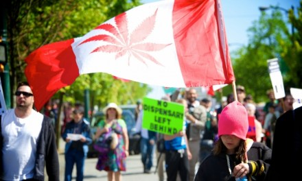 Canada Has a Marijuana Shortage, and This Is Why You Should Care