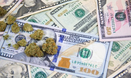 Marijuana Stocks Will Soar if This Legislation Passes – Motley Fool
