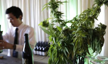 A Little Pot with that Pinot? California Weed Farms and Wineries Pair Up – Men's Journal