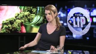 Canada Medical Marijuana Users Can Now Grow Their Own Weed | www.worldsmartiptv.com