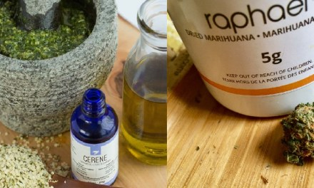 Second Canadian company begins exporting ganja oil to Cayman – Loop Jamaica