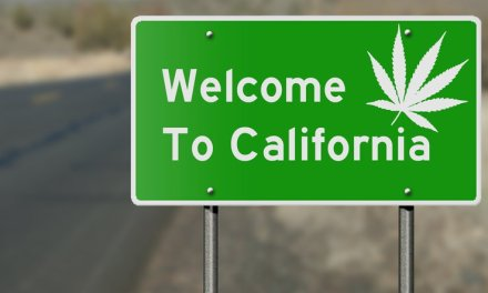 A Thing Of The Future: Cannabis Franchising