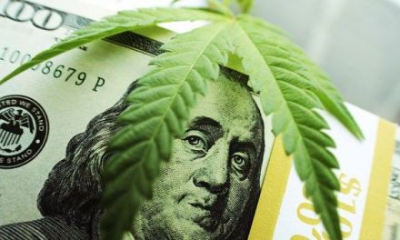 IRS collects $2.8 billion in pot taxes, much of it in cash