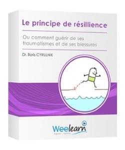 Le principe de la résilience