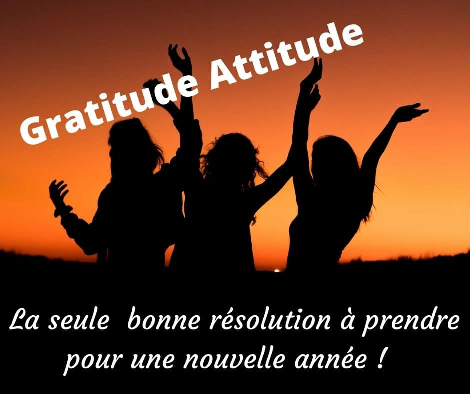 Read more about the article La seule bonne résolution pour 2021 : Pratiquez la Gratitude Sans Modération.