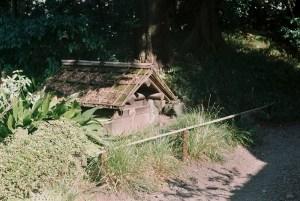 小石川後楽園の屋根