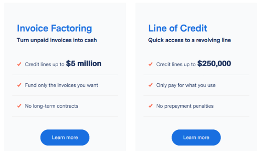 BlueVine Financing Options